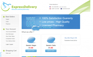ExpressDelivery.biz Home Page