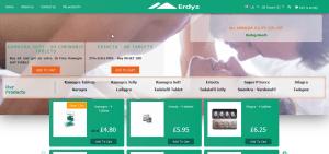Main Page of Erdys.com